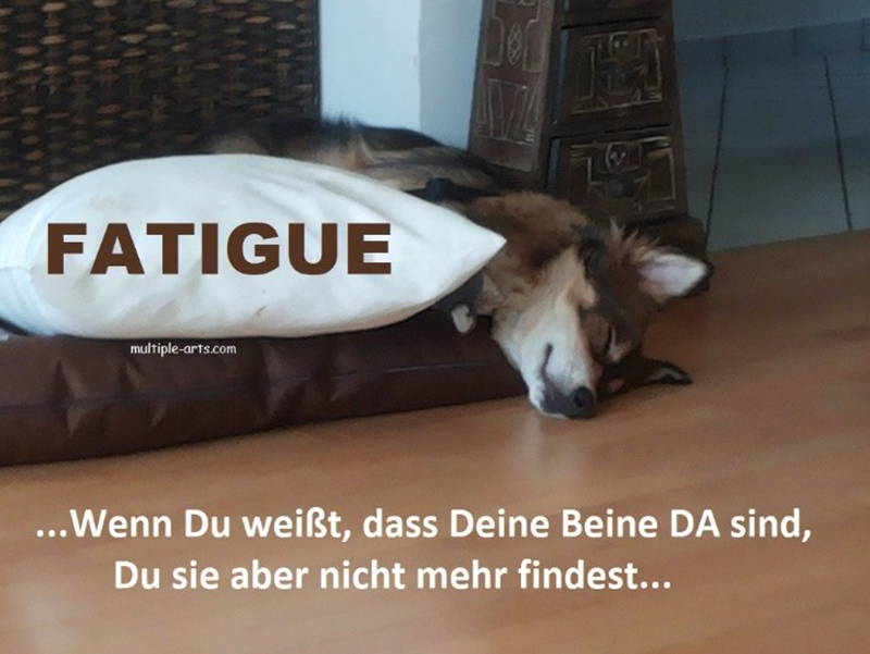 Bein-Fatigue